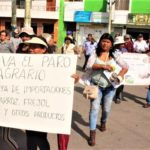 Productores Agrarios acatarían huelga indefinida en 60 días si no se instala mesa multisectorial