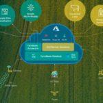 La iniciativa de Microsoft que puede revolucionar la producción Agropecuaria