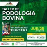 Taller de Podología Bovina