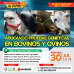 EN VIVO: Aplicando Pruebas Genéticas en Bovinos y Ovinos
