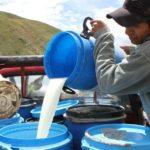 En La Joya y en Santa Rita de Siguas se dejaron de distribuir más de 2 millones de litros de leche por paro