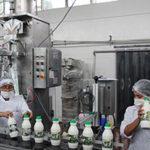 Seguridad alimentaria: La leche de cada día