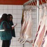 Cajamarca: Senasa coordina con mataderos la entrega de Kits de faenamiento