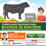 Curso On Line: Formulando Raciones para Bovinos de Engorde