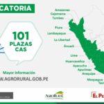 ¿Buscas empleo? Agro Rural inicia proceso de selección de 101 plazas en 19 regiones