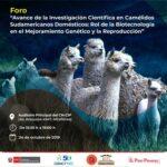 Foro: Avances de la Investigación Científica en Camélidos Sudamericanos Domésticos