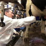"""Nuevos avances muestran que """"la salud animal y humana van de la mano"""""""