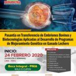 Pasantía en Transferencia de Embriones Bovinos y Biotecnologías Aplicadas al Desarrollo de Programas de Mejoramiento Genético en Ganado Lechero - Participa con Beca 100% Integral - Solo 5 Cupos