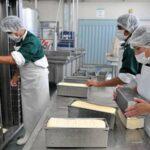 Se Solicitan Capacitadores de HACCP en Derivados Lácteos Residentes en Arequipa, Puno y Tacna