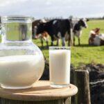 Análisis evolución producción mundial de leche