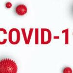 Actividades Veterinarias ante el COVID 19