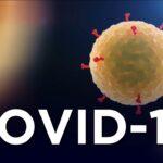Preguntas y respuestas sobre la enfermedad del coronavirus de 2019 (COVID-19)