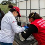 Establo Láctea dona leche para zonas más vulnerables de Virú en La Libertad