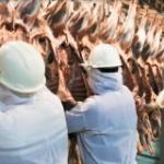 Huancavelica: Inspeccionan condiciones sanitarias en mataderos para garantizar abastecimiento de productos cárnicos inocuos