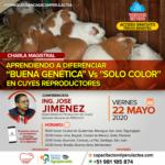 """Webinar Gratuito: Aprendiendo a Diferenciar """"Buena Genética"""" Vs """"Solo Color"""" en Cuyes Reproductores"""