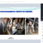 Videoclase: ¿Qué tanto impacta el equipo de ordeño en la salud mamaria de la vaca lechera?