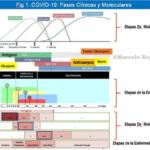 Aportes al elemental conocimiento científico del COVID-19 vía Facebook