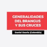 Videoconferencia: Generalidades del Brangus y sus Cruces