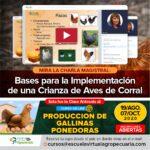 Videoconferencia: Bases para la Implementación de una Crianza de Aves de Corral