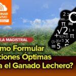 Videoconferencia: ¿Cómo Formular Raciones Óptimas para el Ganado Lechero?