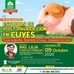Webinar Gratuito: Estudios de Post Producción en Cuyes