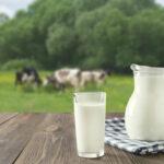 En Chile las Importaciones Lácteas, Sigue Marcando un Registro Histórico