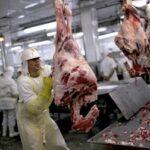 Este año Brasil rompería su récord de exportaciones de carne bovina de 2019