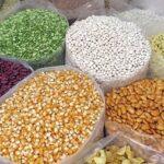 ¿Qué Grano de Cereal es Recomendable para el Ganado?
