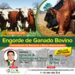 Curso On Line: Engorde de Ganado Bovino - Formulación de Raciones y Bases Nutricionales