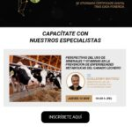 Webinar Tour Virtual Agrovet Market:  Perspectivas del Uso de Minerales y Vitaminas en la Prevención de Enfermedades Metabólicas de Ganado Lechero