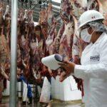 MINAGRI: Mejoramiento de mataderos avanza en la región Piura