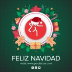 Feliz Navidad y Prospero año 2021 Les Deseamos en Perulactea