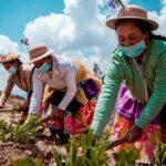 La Agricultura Familiar Cumple un Rol Clave en el Abastecimiento Diario de Alimentos Durante la Pandemia