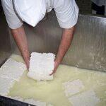 Suero lácteo se convertiría en ácido cítrico para la industria alimenticia