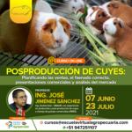 Curso On Line: Posproducción de Cuyes
