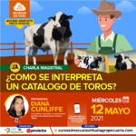 Webinar Gratuito: ¿ Cómo se Interpreta un Catálogo de Toros?