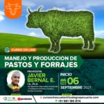 Curso On Line: Manejo y Producción de Pastos y Forrajes