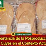 Importancia de Pos-Producción de Cuyes en el Contexto Actual