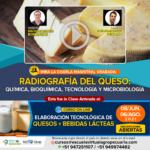 Radiografía del Queso: Química, Bioquímica, Tecnología y Microbiología