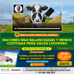 Videoconferencia: Raciones más Balanceadas y Menos Costosas para Vacas Lecheras