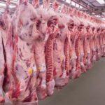 Las proyecciones del USDA para las exportaciones de carne de res de Estados Unidos son altas para 2021, pero no tan favorables para 2022
