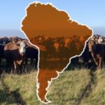 Representantes de Diferentes Gobiernos Sudamericanos Defenderán la Producción de Carne en la Cumbre de la ONU