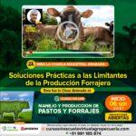 Videoconferencia: Soluciones Prácticas a las Limitantes de la Producción Forrajera