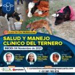 Curso On Line Multidocente: Salud y Manejo Clínico del Ternero