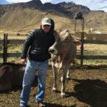 Jorge Bellido Lopera a la presidencia de la Asociación Brown Swiss del Perú