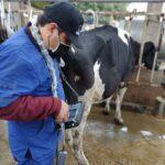 Agropecuaria Lester implementa mejoras en su proceso productivo