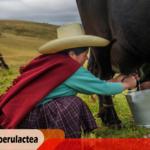 AGALEP: II Reforma Agraria no está considerando el problema lechero por la posición de dominio del Grupo Gloria