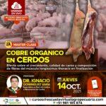 """Webinar Gratuito: """"Uso de Cobre Orgánico en Alimentación de Cerdos"""""""